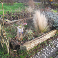 Bishopstown Youth Project-Item01-Fairy Walk